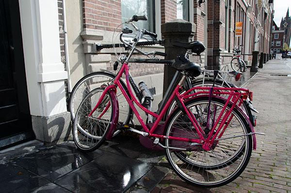 delftpinkbike1
